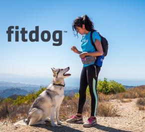 Fitdog. Удобное веб-приложение для владельцев собак