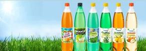 Базовая оптимизация и развитие сайта производителя алкогольных и безалкогольных напитков «Альпина»