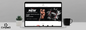 Создание удобного и отзывчивого интернет-магазина товаров для спорта Melsfit