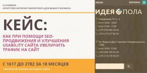 Увеличение трафика на молодой сайт при помощи SEO-продвижение и улучшения usability сайта
